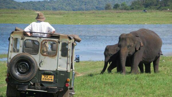 Сафари в национальном парке Каудулла в Шри-Ланке