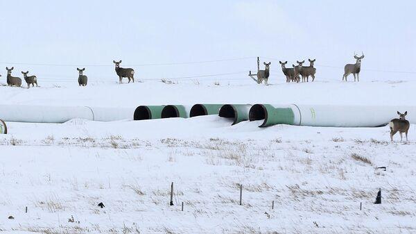 Трубы для нефтепровода Keystone XL в Гаскойне, Северная Дакота