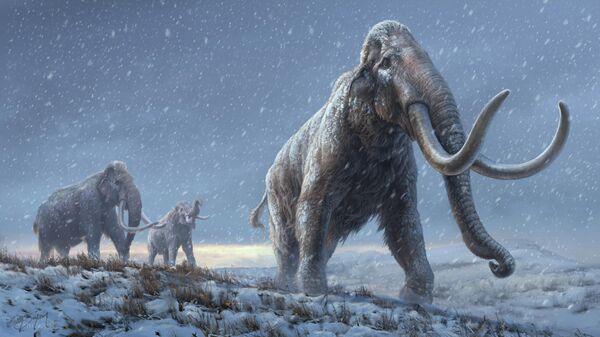 Реконструкция степного мамонта, предшественника шерстистого мамонта, основанная на результатах генетического исследования