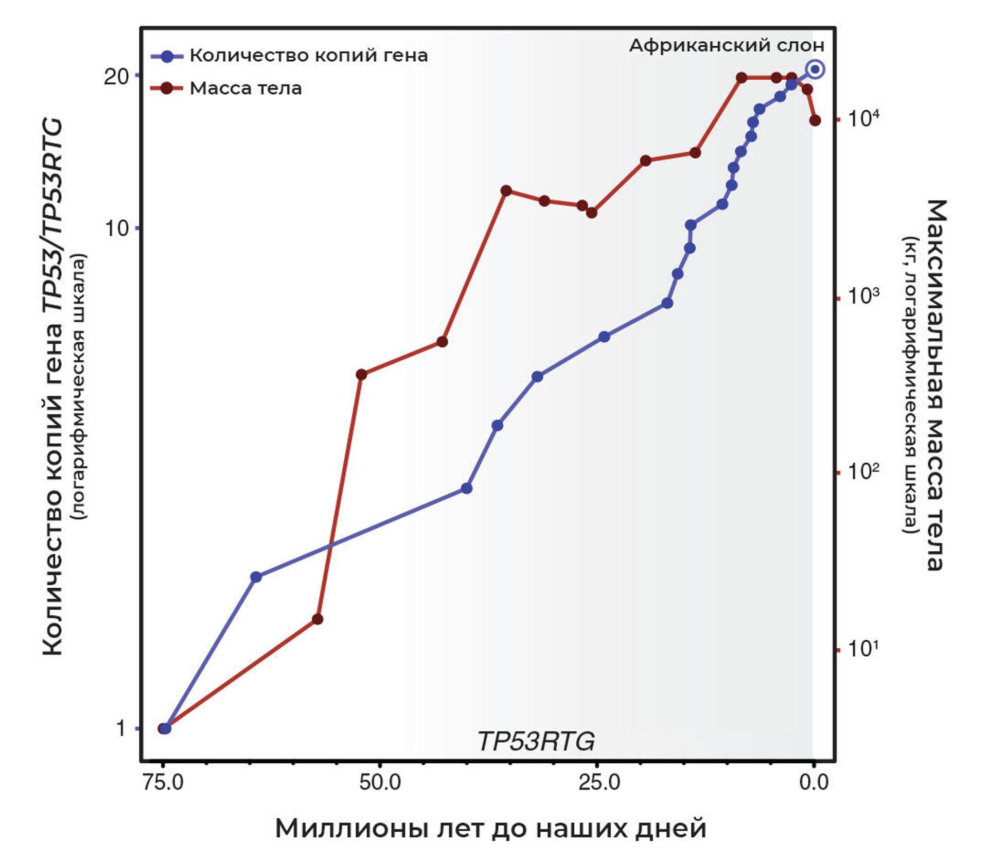 Число копий гена TP53/TP53RTG - РИА Новости, 1920, 26.02.2021
