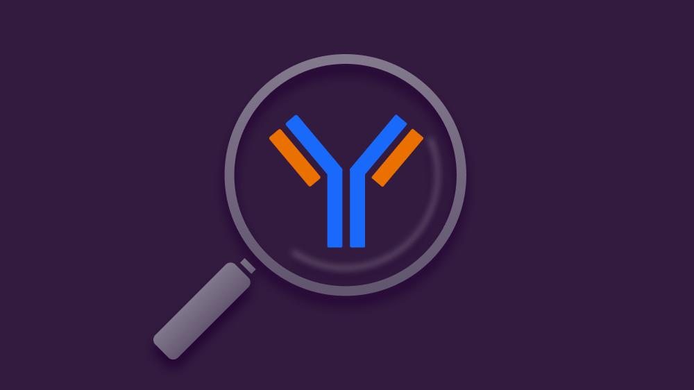 Антитела к коронавирусу: как выбрать тест и оценить результат