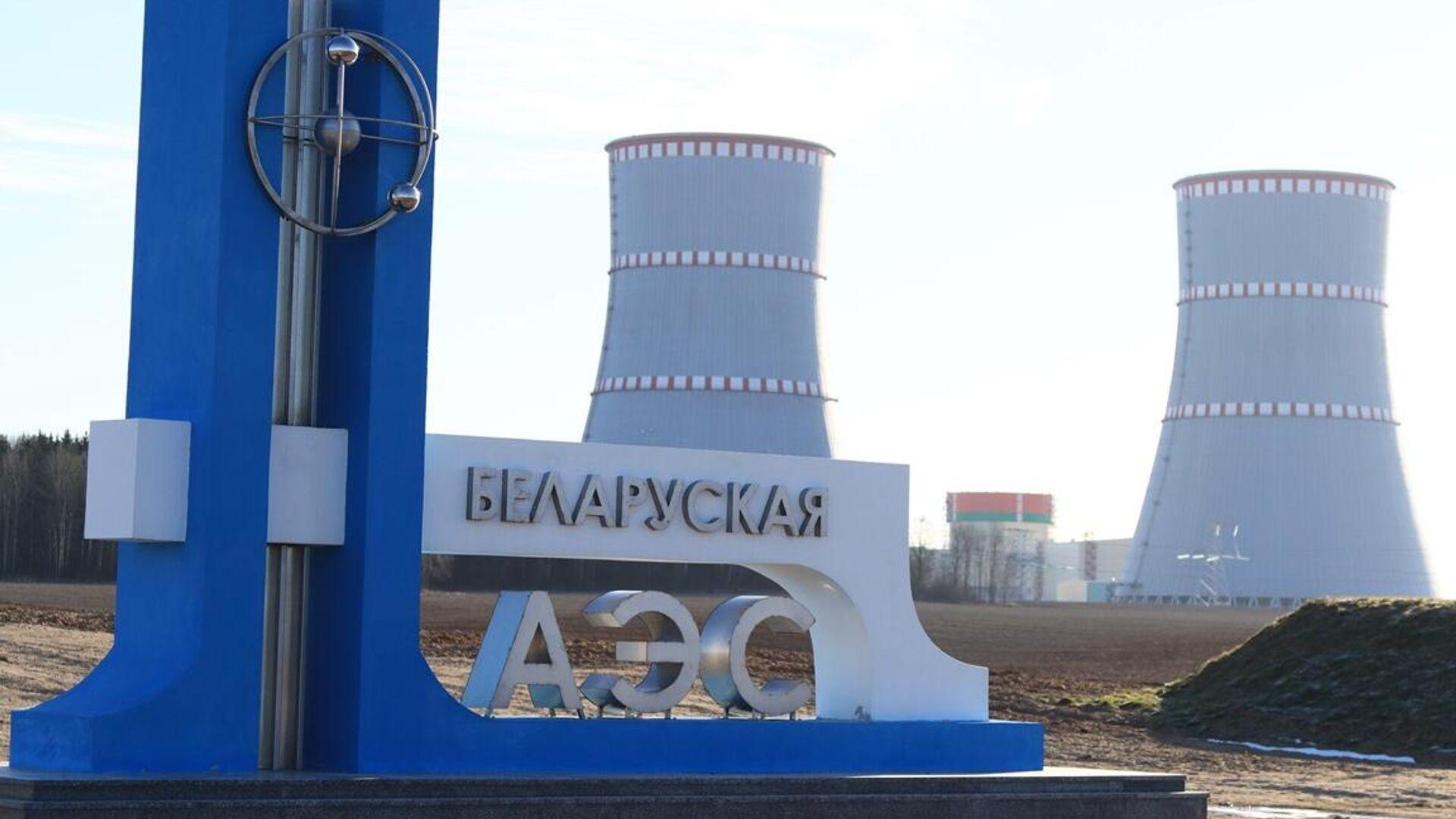 Загрузка имитаторов тепловыделяющих сборок (ИТВС) в реактор второго энергоблока Белорусской АЭС - РИА Новости, 1920, 25.04.2021