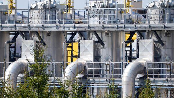 """""""Будем просить на коленях"""": поляки припомнили ЕС борьбу с российским газом"""