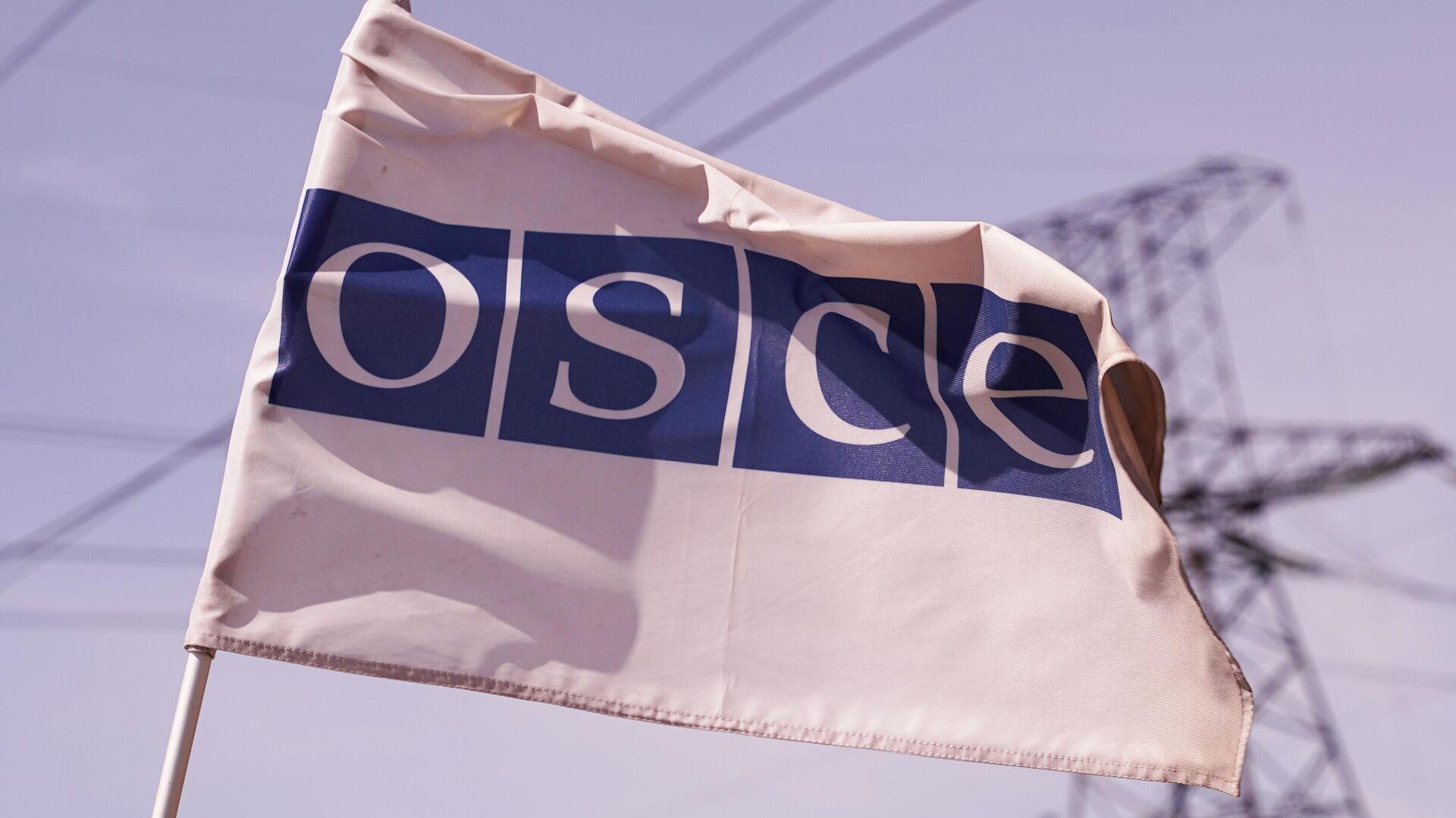 Флаг ОБСЕ в районе линии боевого соприкосновения у поселка Золотое Луганской Народной Республики - РИА Новости, 1920, 21.06.2021