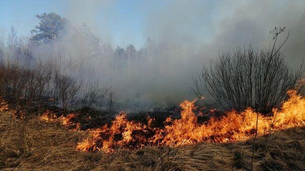 Природный пожар в Свердловской области