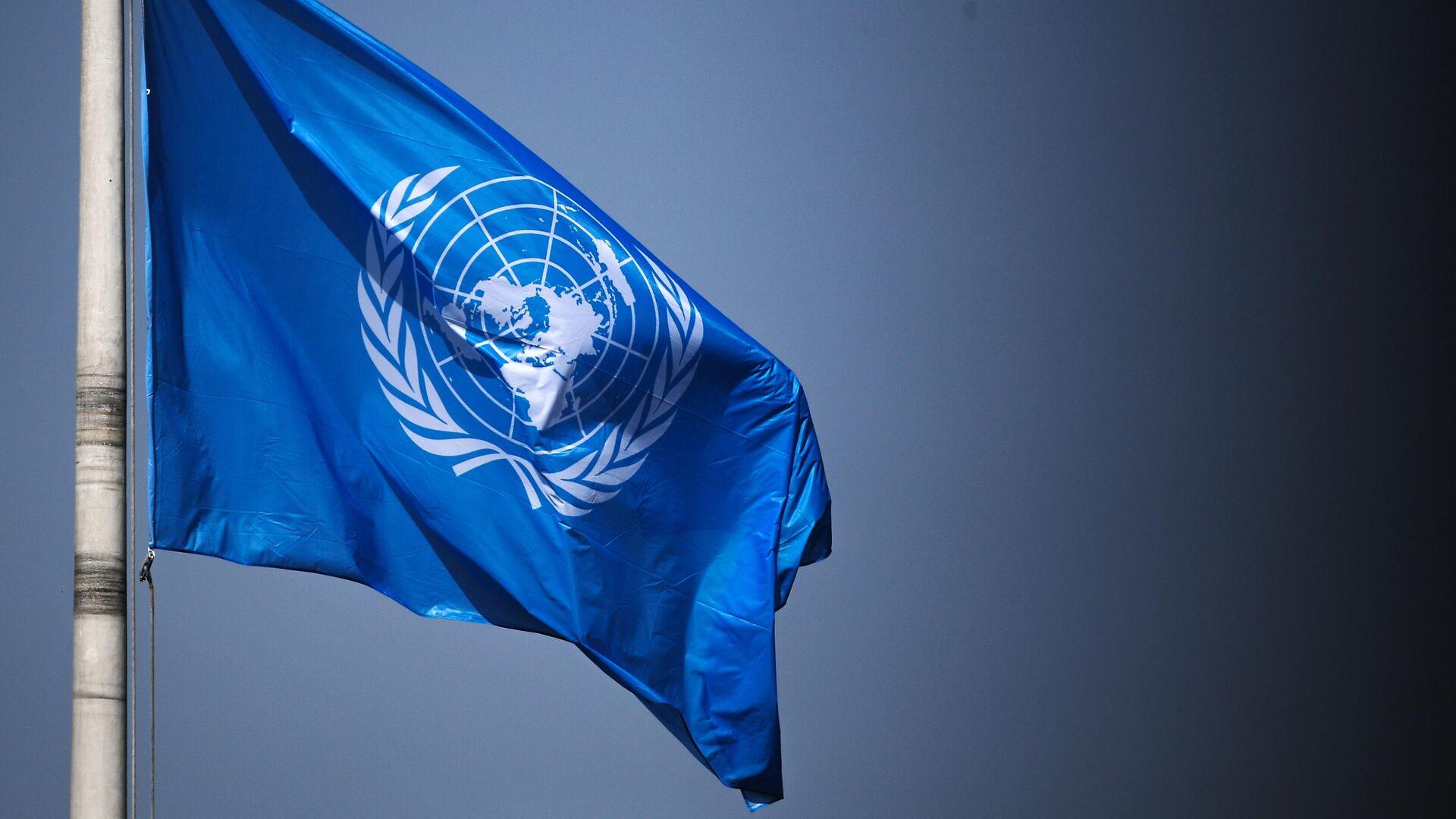 Флаг ООН на территории Дворца мира в Гааге - РИА Новости, 1920, 26.07.2021