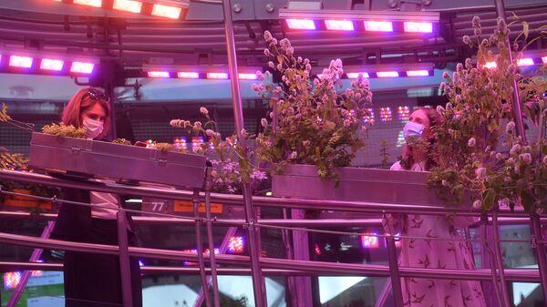 На выставке растений в парке Зарядье в Москве