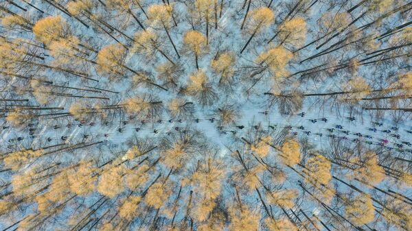 Работа фотографа из Китая Чан Сюя На лыжах в весну, занявшая первое место в категории Моя планета в Фотоконкурсе имени Андрея Стенина