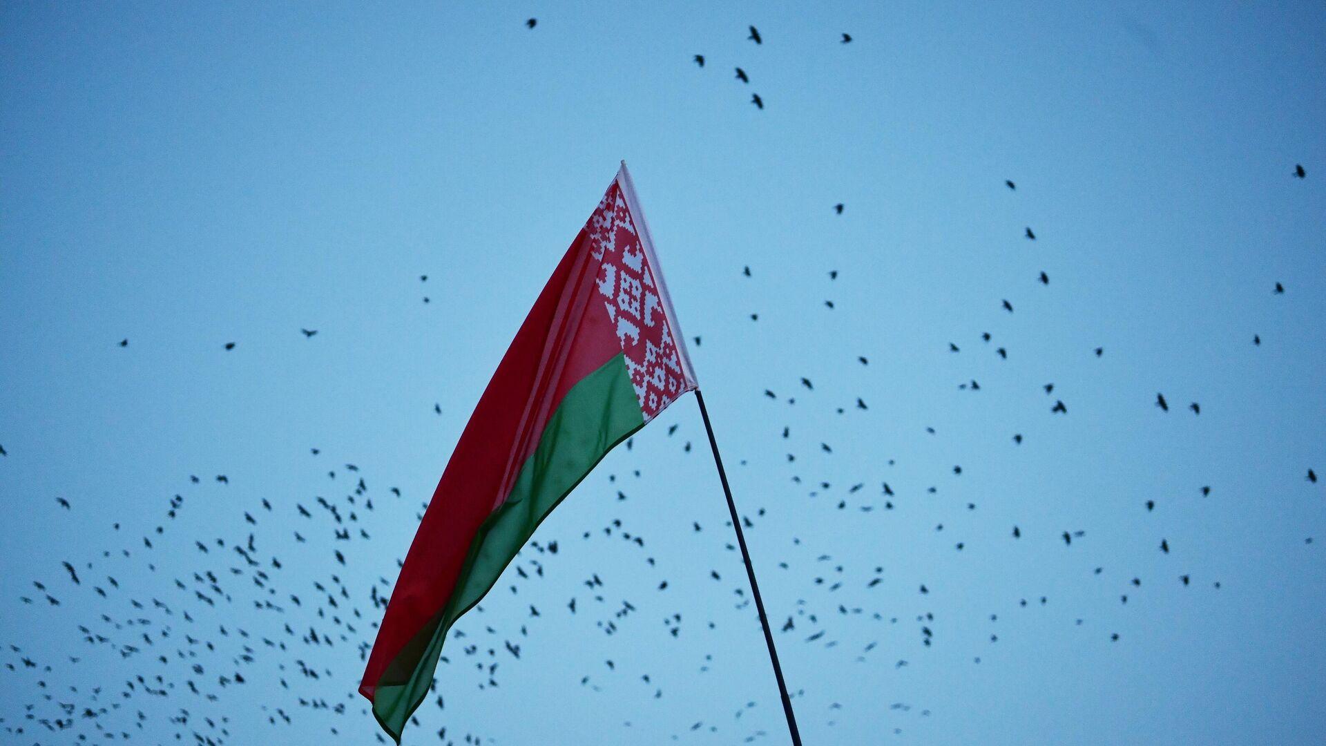 Флаг Белоруссии - РИА Новости, 1920, 23.06.2021