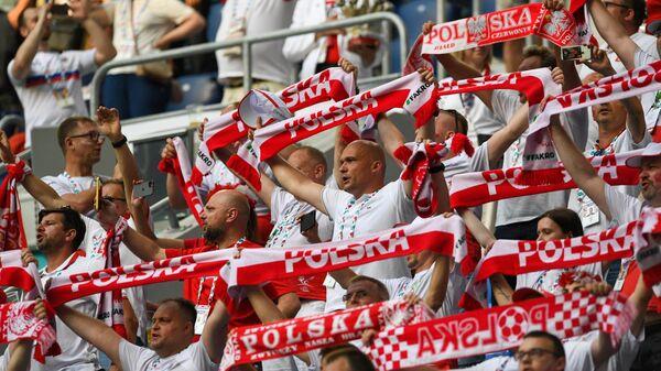 Болельщики сборной Польши на матче с командой Швеции в Санкт-Петербурге