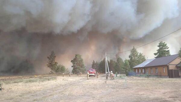 Сотрудники МЧС во время тушения лесного пожара в Челябинской области