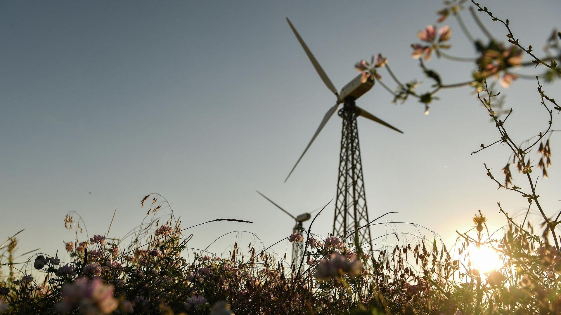 Ветрогенераторы на Мирновской ветроэлектростанции в Крыму - РИА Новости, 1920, 27.09.2021