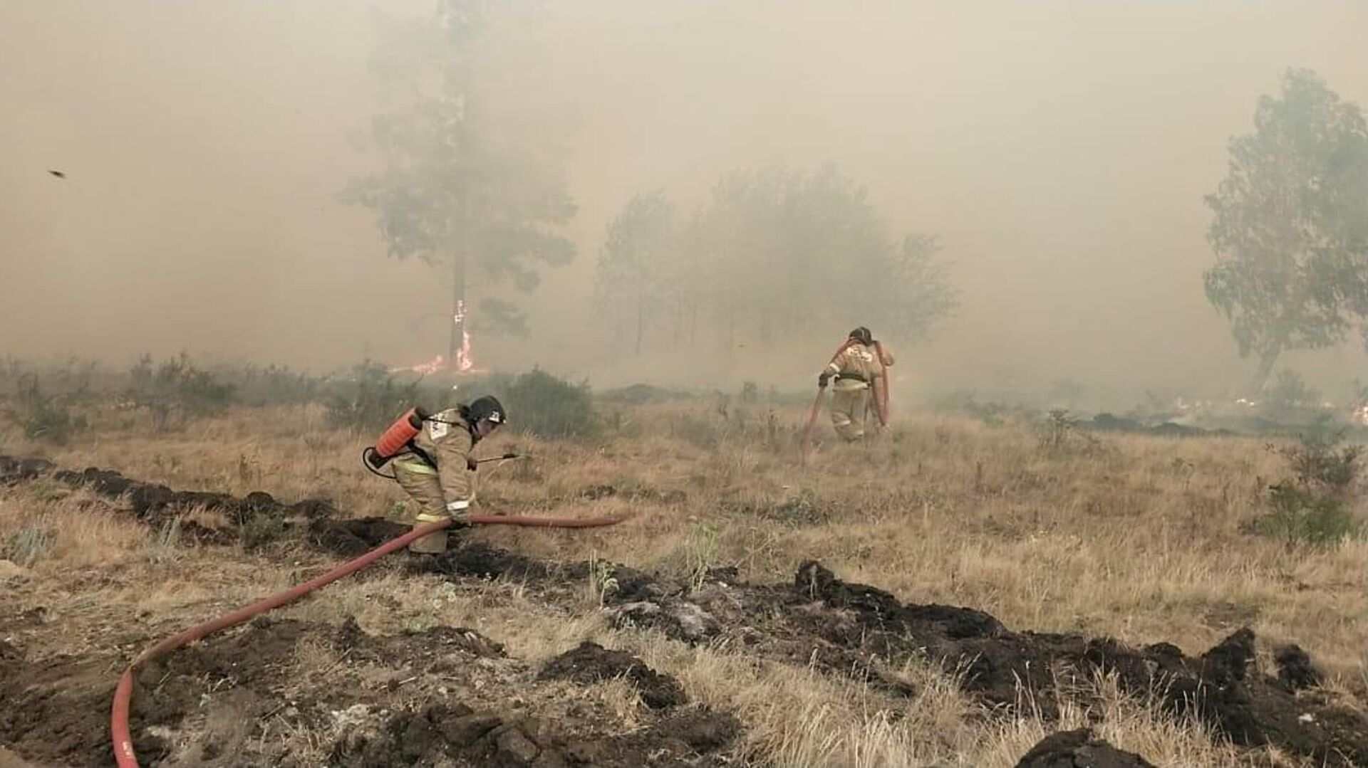 Сотрудники МЧС во время тушения лесного пожара в Челябинской области - РИА Новости, 1920, 11.07.2021