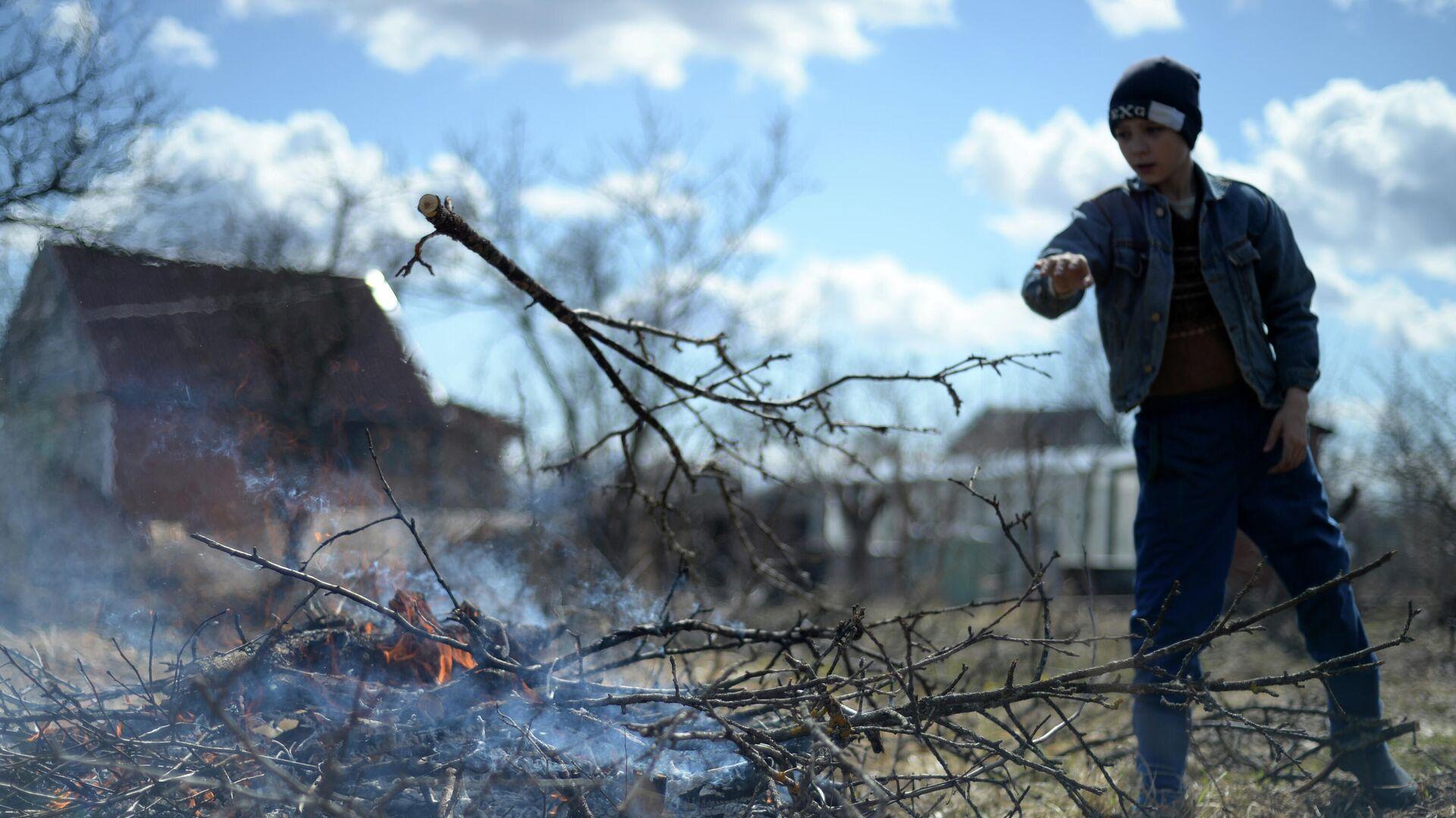 Дачники сжигают старые ветки на приусадебном участке в Новгородской области - РИА Новости, 1920, 18.07.2021