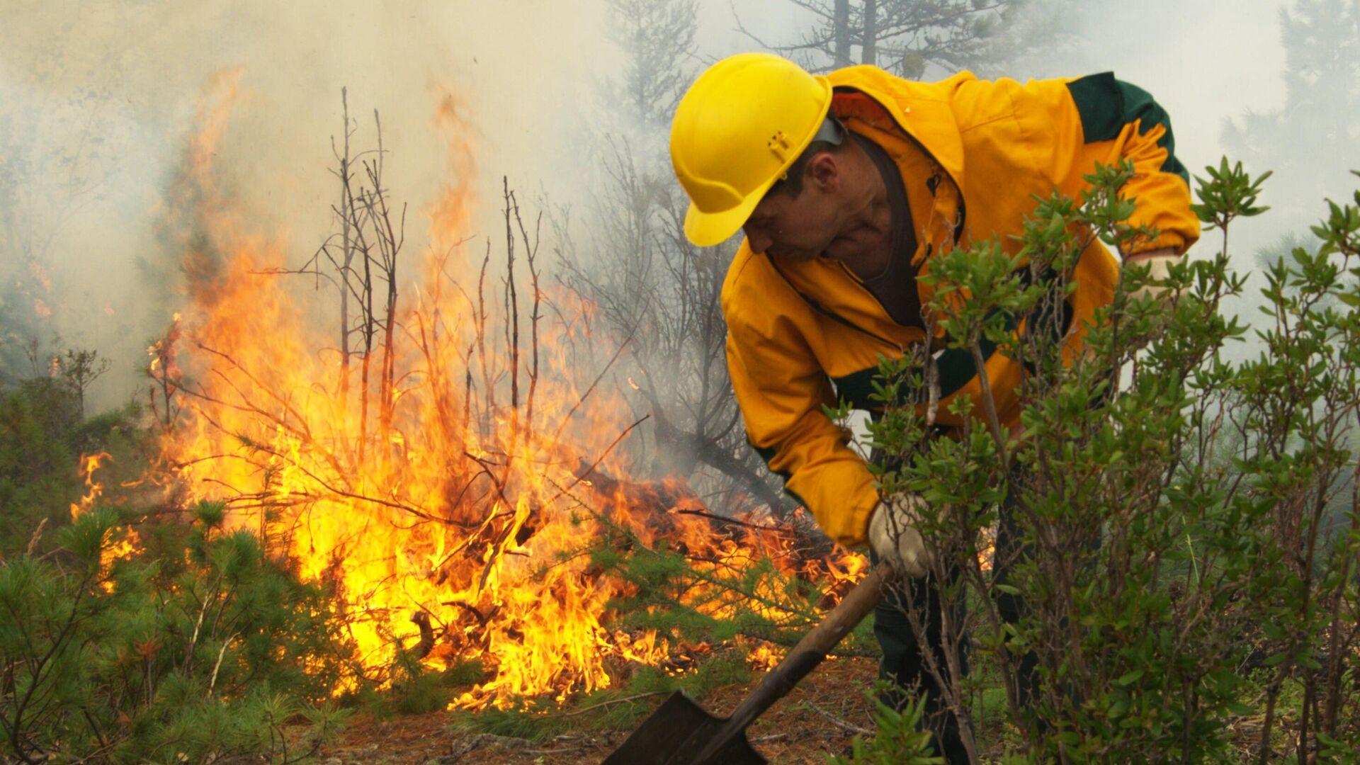 Сотрудник Авиалесоохраны проводит противопожарные мероприятия для препятствия распространению лесных пожаров в Якутии - РИА Новости, 1920, 31.07.2021