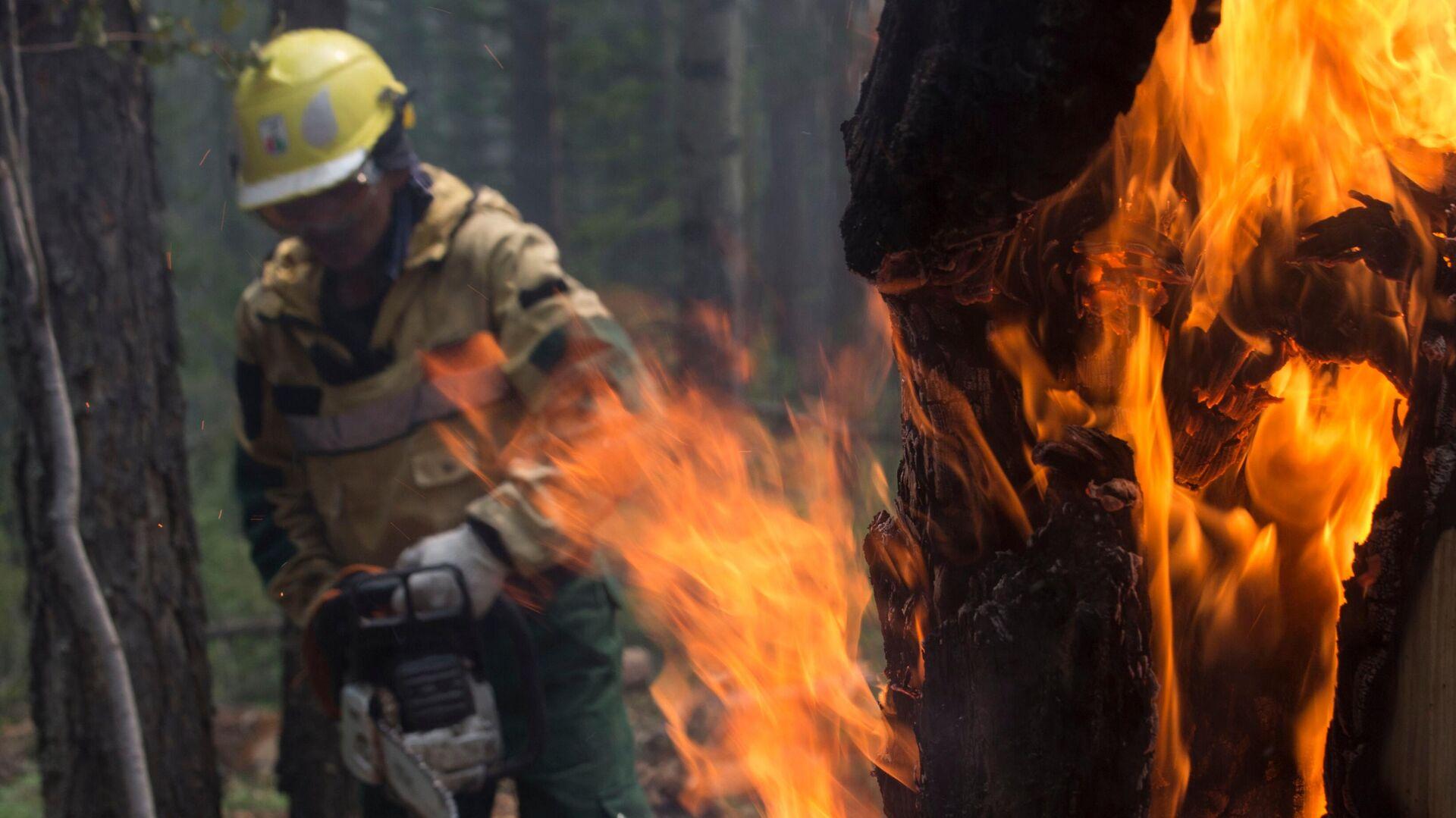 Сотрудник Авиалесоохраны проводит противопожарные мероприятия для препятствия распространению лесных пожаров в Якутии - РИА Новости, 1920, 03.08.2021