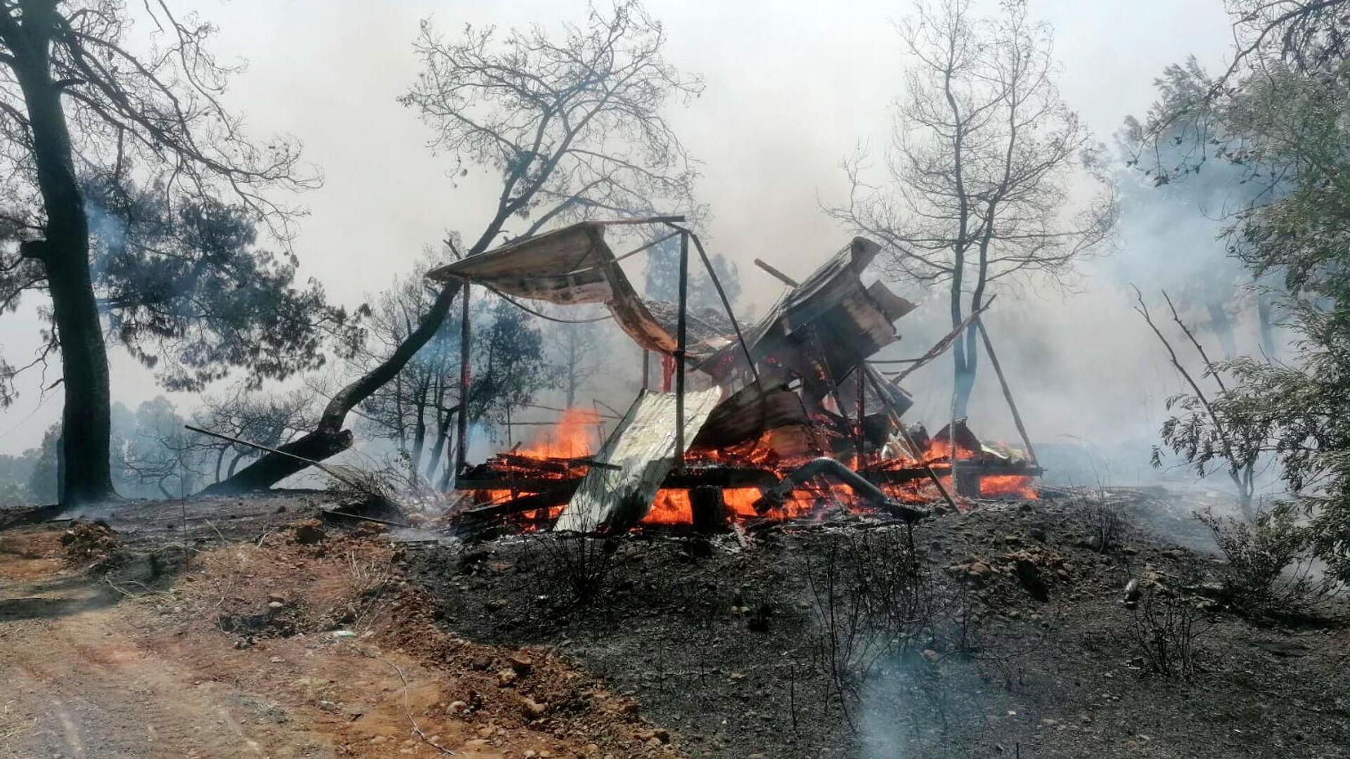 Лесной пожар в Анталье, Турция - РИА Новости, 1920, 29.07.2021