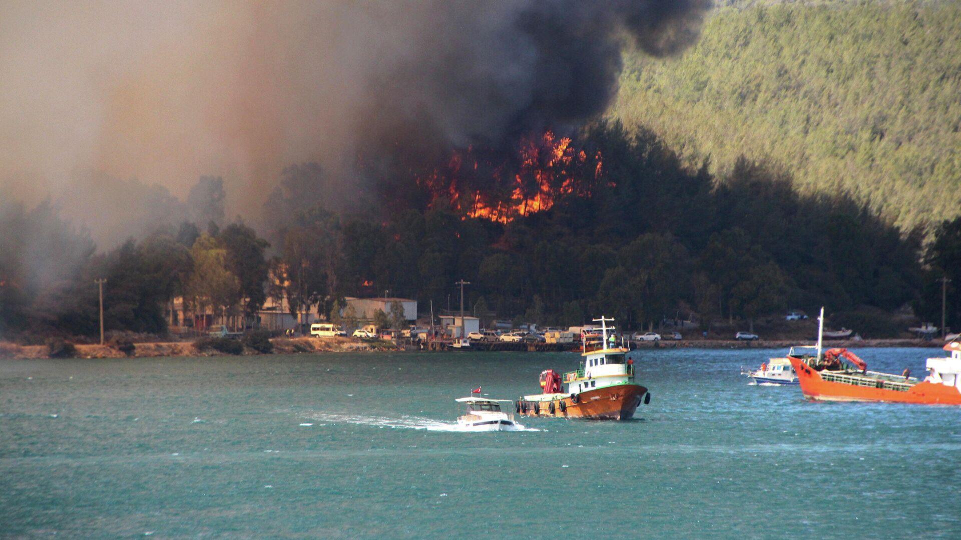 Дым поднимается от лесного пожара в прибрежном городе Бодрум, Турция - РИА Новости, 1920, 30.07.2021