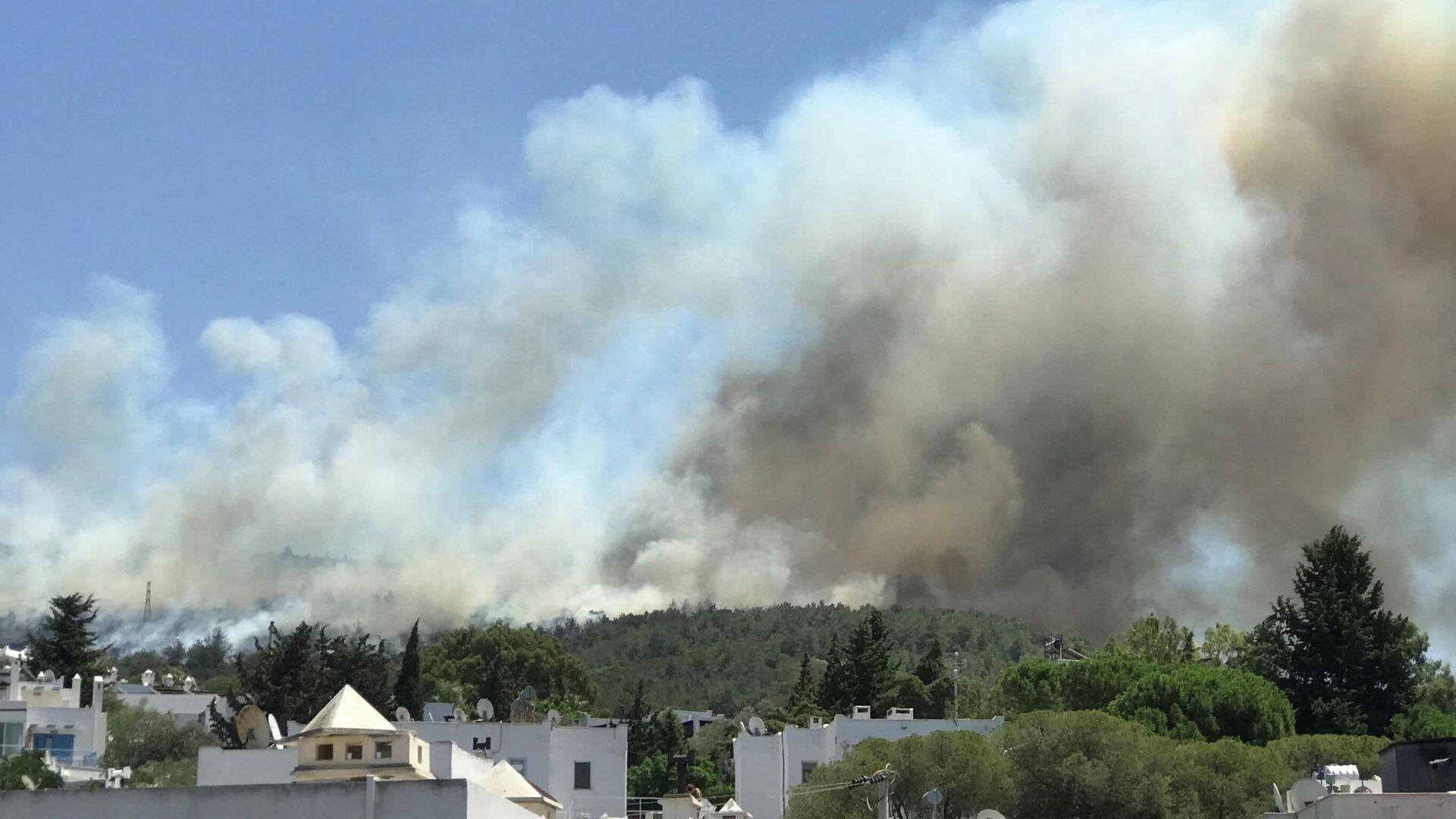 Дым от лесного пожара поднимается возле жилого района на курорте Бодрум, Турция - РИА Новости, 1920, 31.07.2021