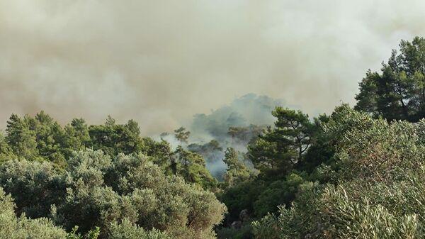 Дым от лесных пожаров в районе деревни Хисарёню в окрестностях турецкого города Мармарис