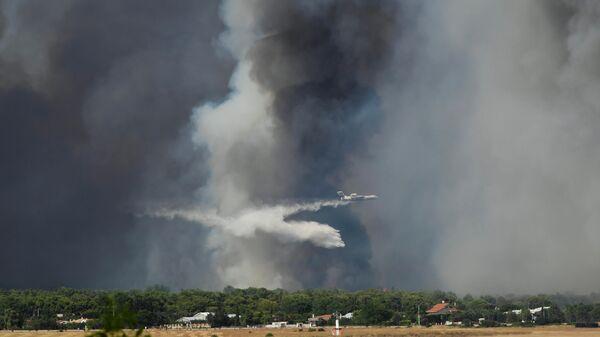 Тушение лесного пожара вблизи королевской резиденции Татой, Греция