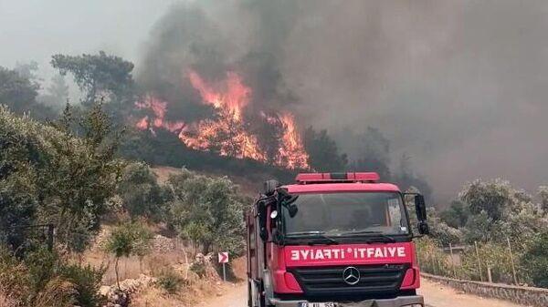 Лесной пожар в районе Тюркэвлер, рядом с которым располагается ТЭЦ Йеникёй