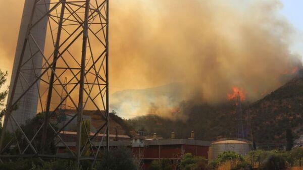 Лесной пожар неподалеку от ТЭЦ Йеникей  в районе Бодрума