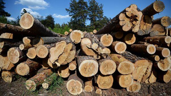 Склад леса