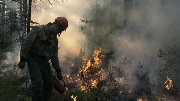 Тушение лесного пожара в районе Хангаласский улус в Якутии