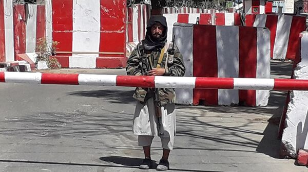 Боевик Талибана* в Газни