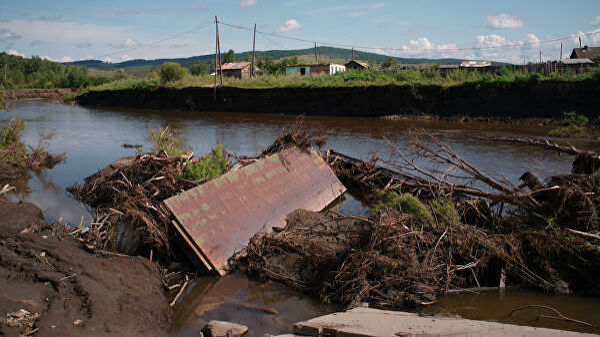 Берег реки Кия после разлива