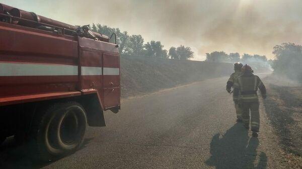 Сотрудники МЧС во время ликвидации природного пожара в Оренбургской области