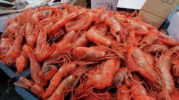 Во Владивостоке проверят морепродукты после обнаружения опасных водорослей