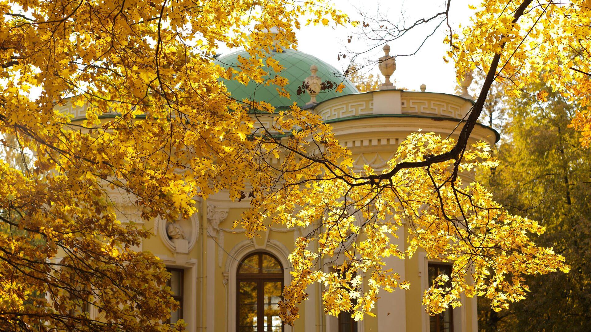 Золотая осень в Кусково - РИА Новости, 1920, 21.09.2021