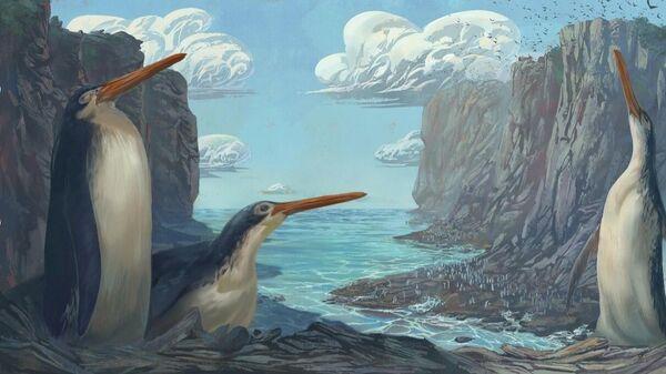 Художественная реконструкция гигантского пингвина Kairuku waewaeroa