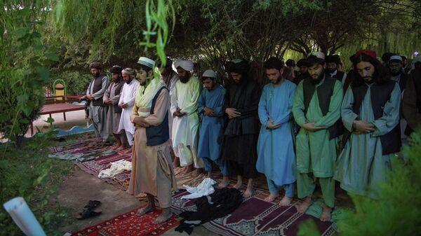 Сторонники движения Талибан* во время молитвы в Герате, Афганистан