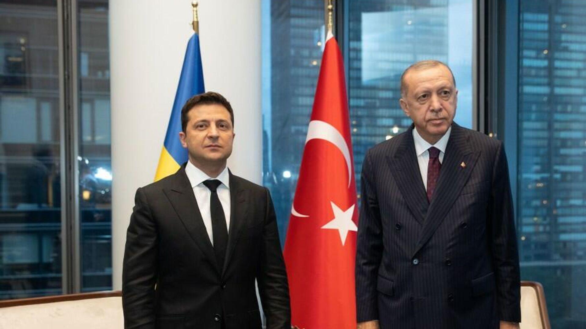 Президент Украины Владимир Зеленский и президент Турции Тайип Эрдоган во время встречи в Нью-Йорке - РИА Новости, 1920, 22.09.2021