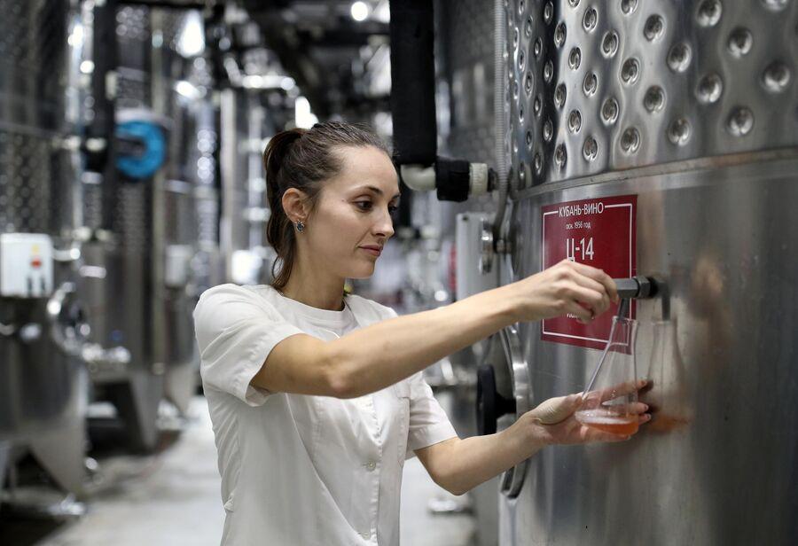Отбор проб для исследований в технологической производственной химико-микробиологической лаборатории винодельни Кубань-Вино в Краснодарском крае