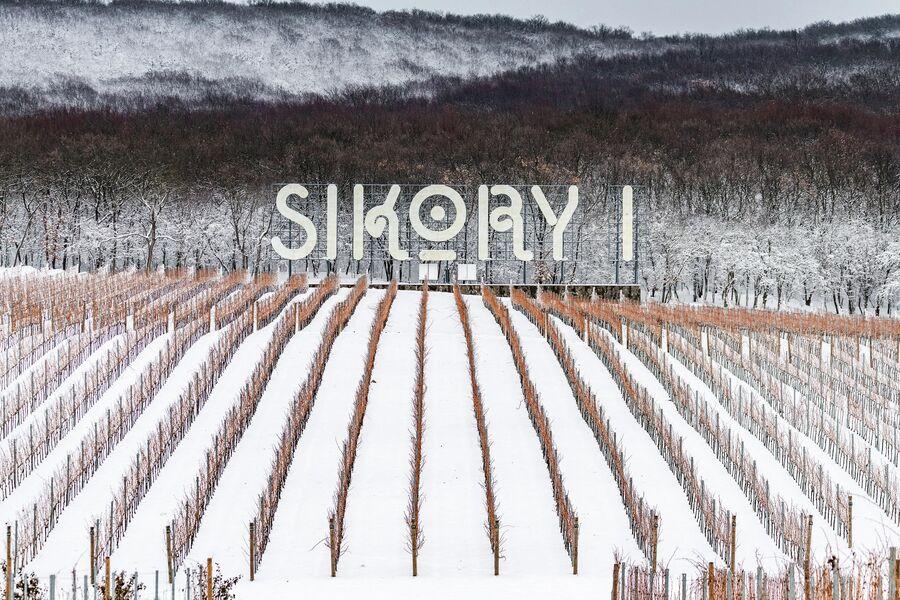 Винодельня Имение Сикоры