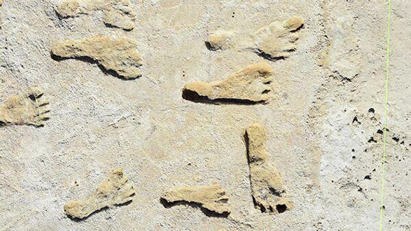 Отпечатки человеческих ног возрастом 23-21 тысяч лет в Нью-Мексико, США