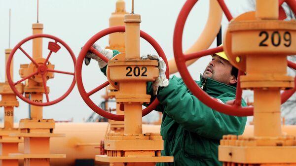 Рабочий на газовом хранилище в Будапеште