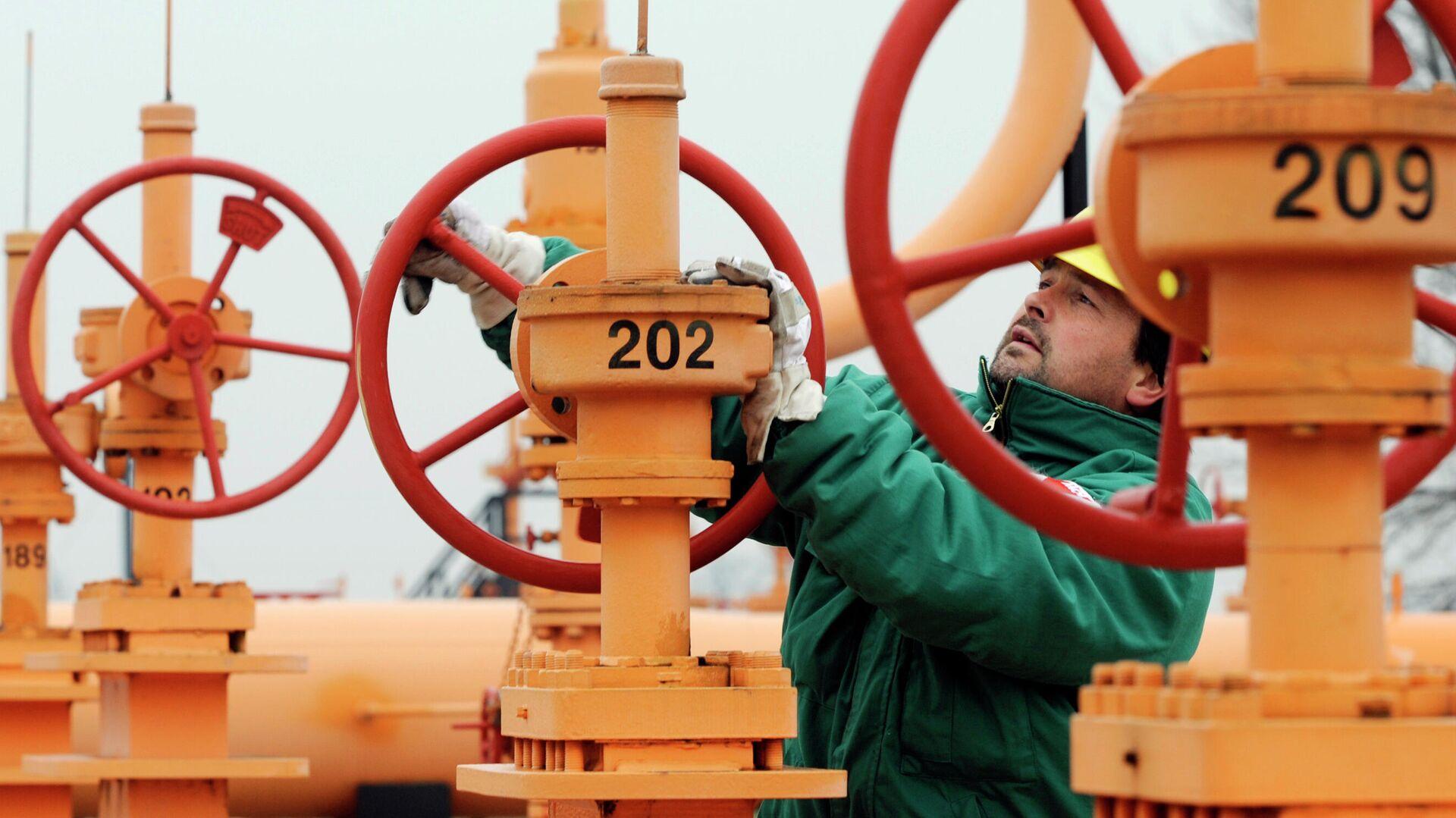 Читатели Daily Express: европейские страны будут драться друг с другом за российский газ