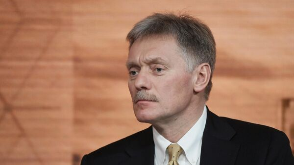 Песков прокомментировал задержание Можейко