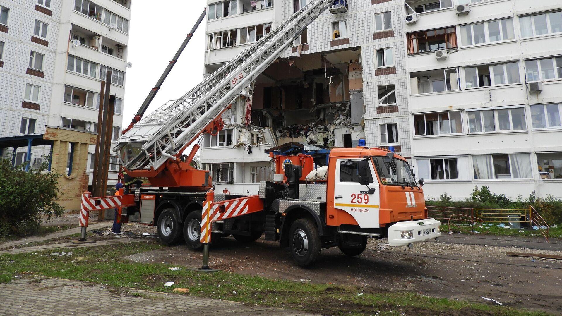 Спасатели нашли в разрушенном доме в Ногинске трех кошек