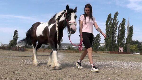 Ранчо «ненужных» животных: волонтер спасает верблюдов и лошадей