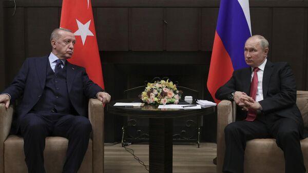 Президент РФ Владимир Путин и президент Турции Реджеп Тайип Эрдоган во время встречи в сочинской резиденции Бочаров Ручей