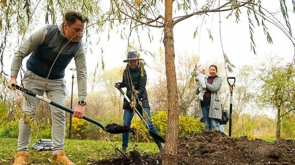 Более 4 тыс деревьев высадили с начала осени в ходе семейно-экологической акции в Москве