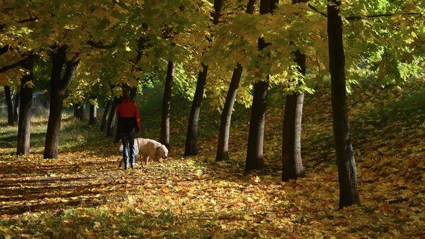 Девушка гуляет с собакой в сквере на Ленинском проспекте