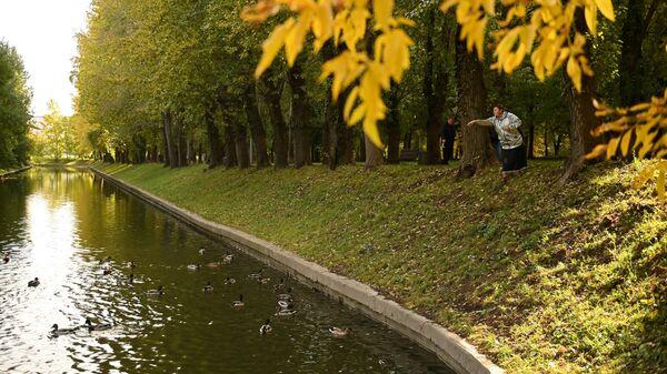 Женщина кормит уток в парке Красная Пресня в Москве