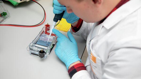 Ученые Научно-практической лаборатории молекулярно-генетических методов исследований СФУ демонстрируют методы анализа мутаций, участвующих в развитии болезни Паркинсона